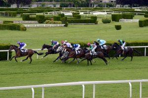 unibet-racing-rules1